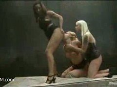 a blonde slut is dominated by two hot horny bitches