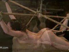 a sex slave struggles in bamboo bondage