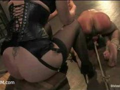 a sadistic brunette Domme is torturing a male slut