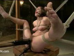 A hairy slut gets her pussy invaded in suspension
