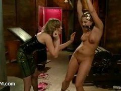 A sexy doll delivered for Maitresse Madeline kinky fun