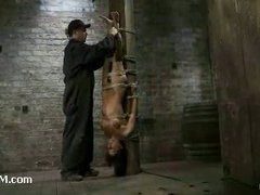 A fabulous babe tied upside down and flogged hard