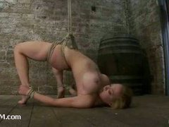 A busty slut strap-on fucked in category 5 suspension