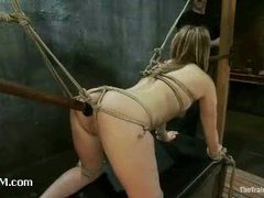 A sexy slave trainee triple penetrated in sophisticated bondage