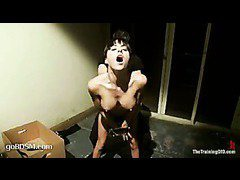 A prurient babe fucked hard in leather straight-jacket