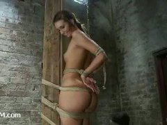 Cute brunette girlie bound in a vertical hogtie to a beam