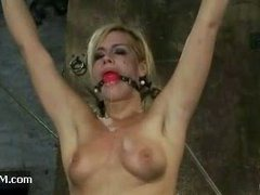 Tara Lynn Foxx takes lots of pain before allowed to cum
