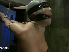 Busty Hawaiian babe blindfolded and suspended by her wrists