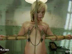 A busty rope slut made to worship ass at slave training