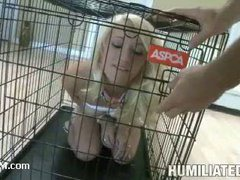A vivid teen locked in the cage for cock feeding