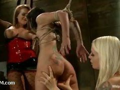 A brunette cutie learning to please two stunning dommes