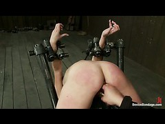 A hot cutie bent in a metal device exposing her tight ass for caning