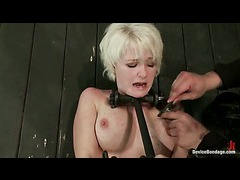A submissive blonde has her swollen nipples zapped