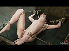 A fit babe suspended by her ankles and double dominated