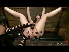 A screaming slut tied to electric fence and whipped