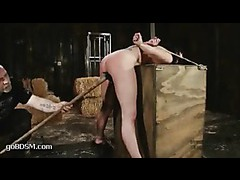 A luxurious babe with perfect tits flogged ruthlessly