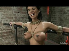 A fiercely beautiful babe gets weights on her nipples and neck rope