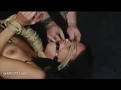 A fresh hottie suffering in intense BDSM play