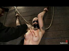 Lorelei Lee strapped to the wall and squirts from strap-on fucking