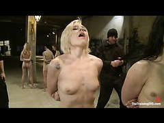 Five submissive sluts get their limits pushed in slave training