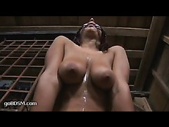 A busty slut has her tits squashed while mouth fucked