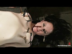 A busty babe finds her limits in intense bondage torture