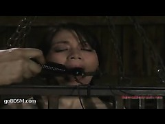 Felony scoring screaming orgasms in a tight steel cage