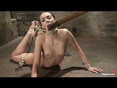 A sexy girl next door bent and bound in a brutal back arch tie