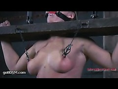 A sizzling blonde thrives on pain in tight metal bondage