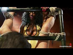 A busty ebony mistress wrestles her slave and destroys his manhood