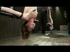 Two hot bondage sluts impaled on the sybian in inverted suspension