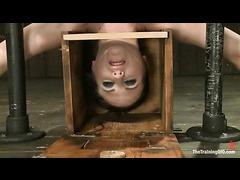 A tough slave trainee tortured in extreme predicament bondage