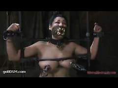 A puffy slut gets her nipples abused in strict metal bondage