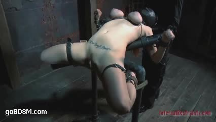 Femdom switch whippings