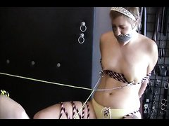 Mistress Xena / Ivy Cat Compilation