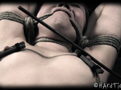 Lovely little liar endures pussy toying punishment in the hogtied position