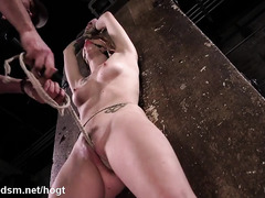 Suspended brunette slave receives vigorous toying for her sexy trimmed twat