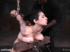 Tormenting submissive slave with excruciating breasts bondage punishment
