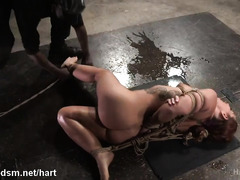 Hogtied slave gets her pussy and anal tunnel toyed by black master until awfully wet