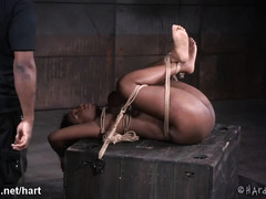 Big hooters ebony moans wildly as black master canes and punishes her sexy body