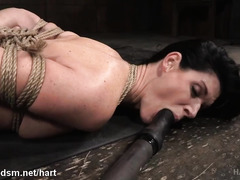 Helpless dark-haired beauty in sexy lingerie enjoys lusty toying for her beaver