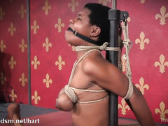 Excruciating whipping and electro play pleasures for submissive ebony chick
