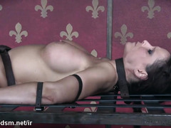 Mature slave receives wicked punishment and beaver toying inside a cage