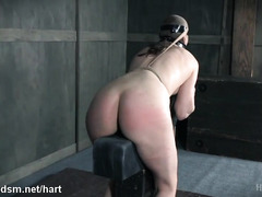 Tied up slave experiences painful pussy flogging and mind-blowing caning delights
