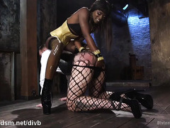 Sexy black mistress torments her white slave stud with her luscious cunt