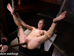 Skinny brunette endures painful pussy punishment while being suspended in bondage