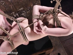 Lovely slave in bondage suspension enjoys rough fingering and dildo toying