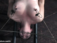 Painful nipples clamping punishment for submissive and busty slave