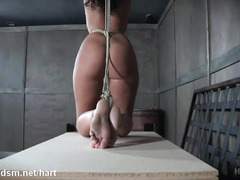 Bounded and suspended slave chick moans wildly from her tormenting experience