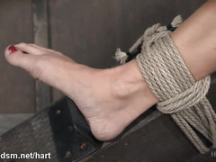 Two stunning beauties are subjected to harsh and explosive bondage punishments